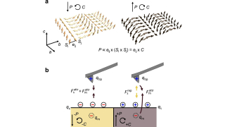 Local electric-field control of multiferroic spin-spiral domains in TbMnO3