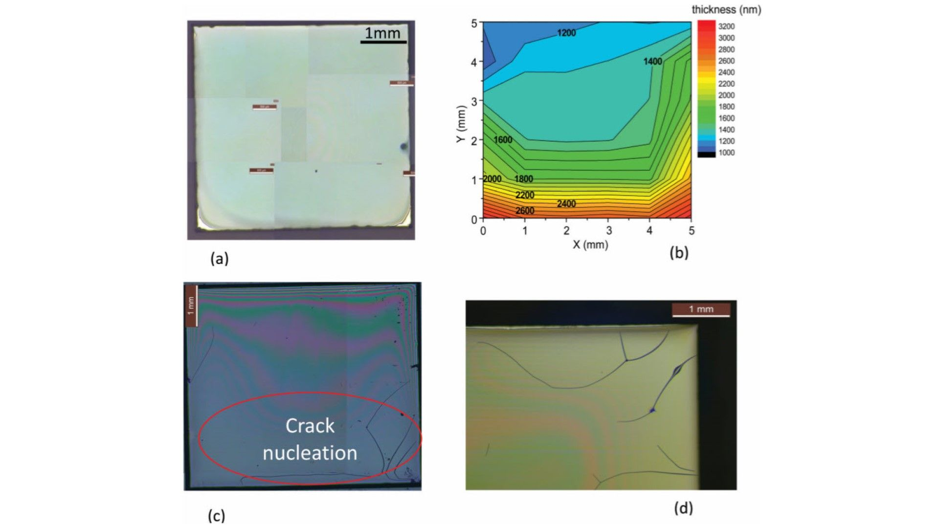 Pyrolysis study of solution-derived superconducting YBa2Cu3O7 films: disentangling the physico-chemical transformations